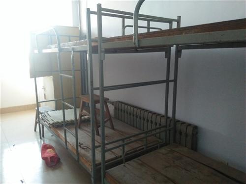 出售鐵架子床,學生專用