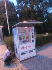 宝贝描述 品牌:哇哈哈制冷饮料售货机 营业地点:公园或广场等等地段 营业方式:投币或扫二维码支付,...