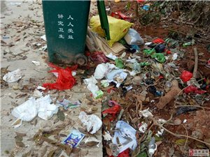 西庆十队环保垃圾堆积如山,无人来啦!