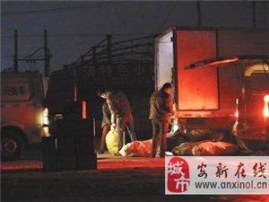 """黑作坊制售假""""河间驴肉""""销往北京"""