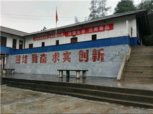 苍溪县双河乡龙固村风光
