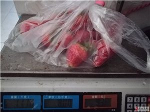 安新朋友注意啦,安新一小北侧卖草莓的称不准,差的太多。