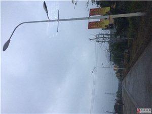木棠镇重金砸出来的路灯不是为了照明,专挂广告牌