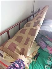 床,白菜价,有需要的联系我:15853726285,微信同号
