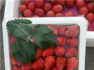 新鲜大草莓专卖