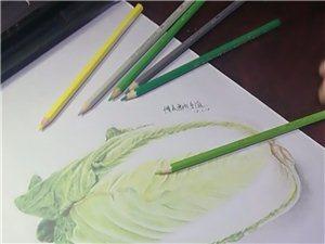 美画社美术、书法寒假培训班1月23日开始上课啦!
