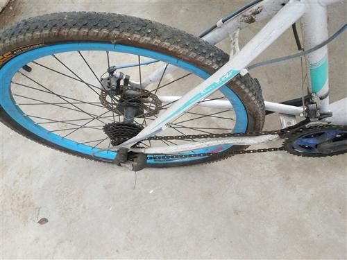 二手自行车低价出售200元,城关东湖路13349120337