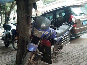 出售二手的摩托车1000元