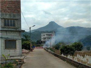 焚烧垃圾,污染居住环境