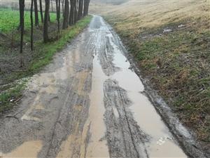 2018,新年伊始,只有一愿:队里能接上村村通的水泥路。