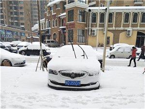 英朗婚車專用