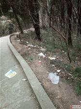 长卿山,垃圾山……