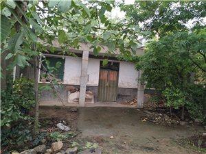 临潼行者街道办行北村房子出售,老房子。