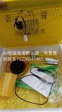 双电源48枚孵化器,有需要的联系15236944487