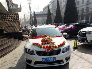 包车租车联系手机13772771882  联系人杨先生 18909135924曹先生 价格手机商议!...