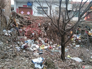 居民的合法耕地被生活垃圾侵占