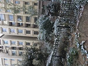 富力花园3室2厅2卫98万元