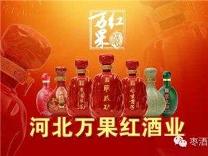 河北萬果紅棗成功酒業山西區招商
