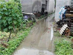 宝筏寺村的泥巴路