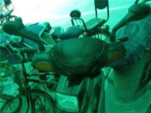 新大洲90二冲程摩托车,饱经风雨肤色暗淡,灯亮表走,踹着就走。废品价420元转让,雁翎公园自提,,1...