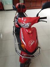 本人有一辆无级变速踏板摩托,结婚时买的,没怎么跑,当时买3200,现在低价处理!