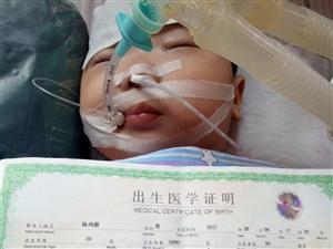 我还不到一岁,还没看到世界什么样,我想活着走出医院