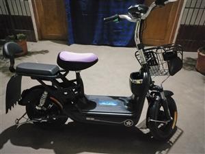 出售一辆全新电动自行车, 给爷爷买的,学骑了两次,实在骑不了,现欲赔钱转让。有意者私聊1365367...
