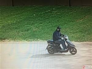 毛贼太狂妄!学校门口偷摩托车!