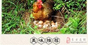 【助村公社】东方市农产品宅配,服务热线:13136036796微信同号