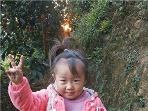 寻人启事:寻乌3岁女孩失踪,穿粉色小外套、蓝色裤子,家人非常着急,大家共同寻找!