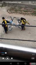 中小学生随意破坏共〓享单车 请学校多♀加教育宣传!