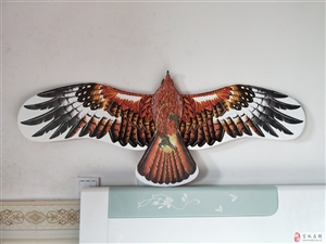 请大家欣赏我做的盘鹰风筝