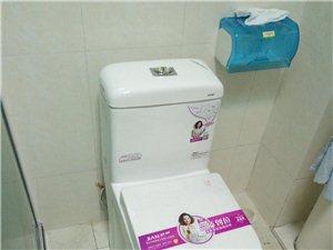 聊城卫浴洁具安装维修/马桶安装维修疏通