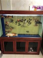 因本人地方需要,鱼缸现整体出售鱼缸包括鱼(150cm长 40cm宽) ,灯 水泵 氧气泵 滤材都带,...