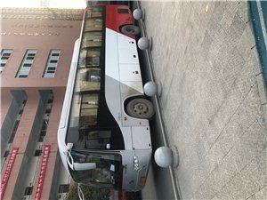 本公司出租19-55大巴車