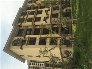 清河湾D区多层花园洋房带电梯现房大产权