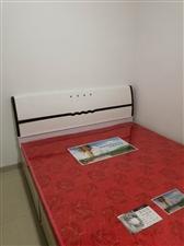 东方明珠2室1厅1卫700元/月