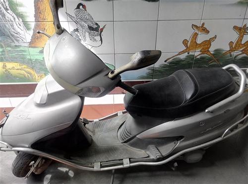 新大洲本田  踏板摩托車