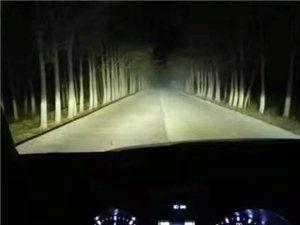 新光源車燈升級改裝