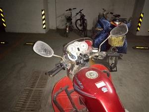 森科125红色摩托车。正常骑着,疝气大灯,铁将军锁,后轮胎刚换的新的。需要的联系。价格面议