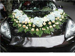 新款雅閣婚慶車隊