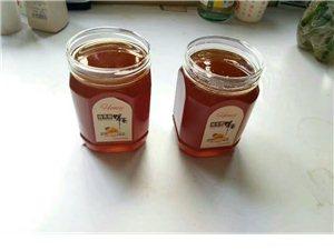 出售纯天然土蜂蜜