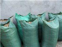 建水田軍營出售花生殼40袋,有要的聯系!