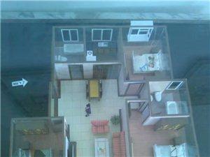 东城国际3室2厅2卫46万元
