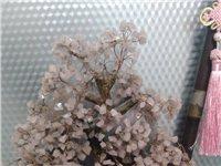 粉水晶樹。