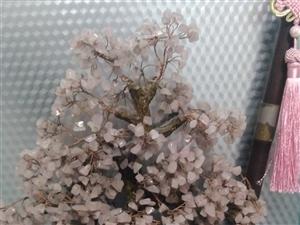粉水晶树。