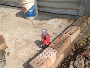 专业水电、改管道、打墙孔、通下水道、砸墙瓦工防水