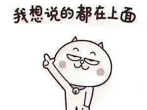 舟曲县峰迭新区房屋出租