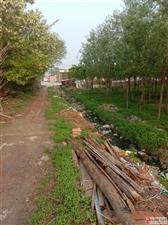 林家庄唯一一条臭水横流的断头道