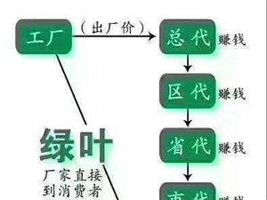 绿叶集团汤阴旗舰店生活超市51开业活动